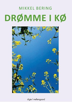 Drømme i kø Mikkel  Bering 9788772186733