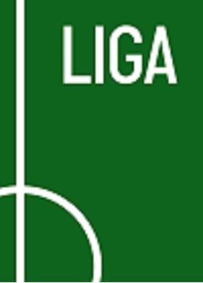LIGA Lars Rønbøg, Mikkel Davidsen 9788799770724