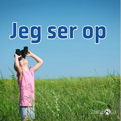 Jeg ser op Marianne Randel Søndergaard 9788770185523