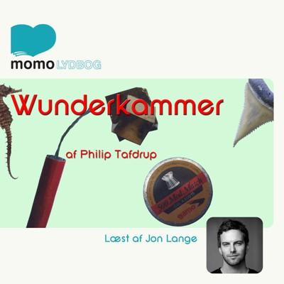 Wunderkammer Philip Tafdrup Jørgensen 9788793447462
