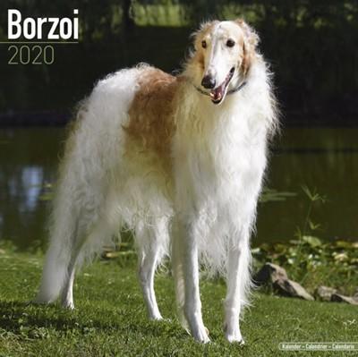 Borzoi Calendar 2020 Avonside Publishing Ltd 9781785805738