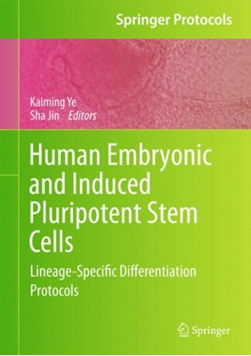 Human Embryonic and Induced Pluripotent Stem Cells  9781617792663
