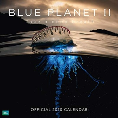 BBC Blue Planet 2020 Calendar - Official Square Wall Format Calendar  9781838540487