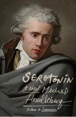 Serotonin Michel Houellebecq 9780374261023