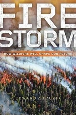 Firestorm Edward Struzik 9781610919975