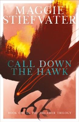 Call Down the Hawk Maggie Stiefvater 9781407194462
