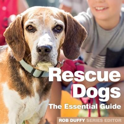 Rescue Dogs  9781913296025
