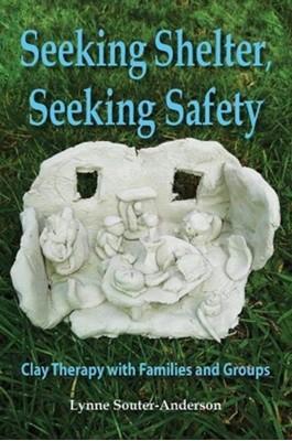 Seeking Shelter, Seeking Safety Lynne Souter-Anderson 9781906289478