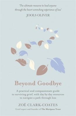 Beyond Goodbye Zoe Clark-Coates 9781409185390
