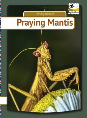 Praying mantis Per Østergaard 9788740659498