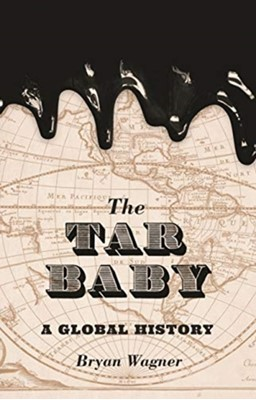The Tar Baby Bryan Wagner 9780691196916