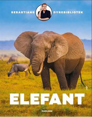 Sebastians dyrebibliotek: elefant Sebastian Klein 9788711983263