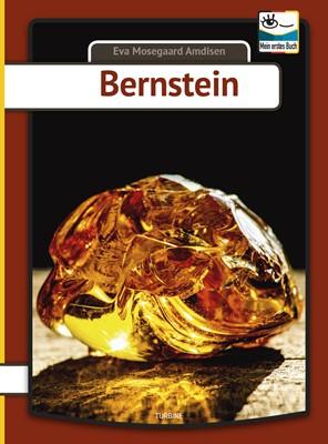 Bernstein Eva Mosegaard Amdisen 9788740661620