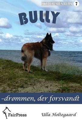 Bully – drømmen, der forsvandt Ulla Holtegaard 9788797180419