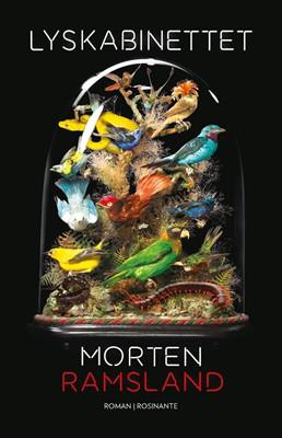 Lyskabinettet Morten Ramsland 9788763853224