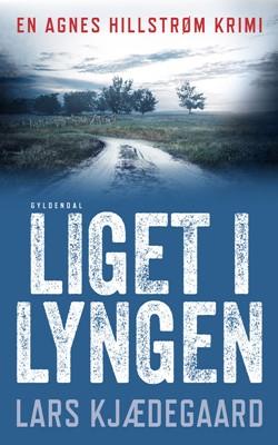 Liget i lyngen Lars Kjædegaard 9788763863759