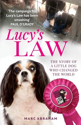 Lucy's Law Marc Abraham 9781912624980