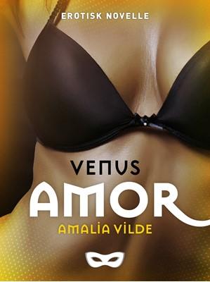 Amor Amalia Vilde 9788793726857