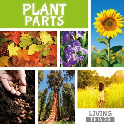 Plant Parts Steffi Cavell-Clarke 9781786370761