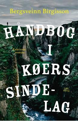 Håndbog i køers sindelag Bergsveinn Birgisson 9788740062861