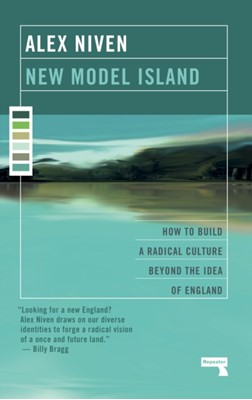 New Model Island Alex Niven 9781912248254