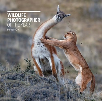 Wildlife Photographer of the Year: Portfolio 29  9780565094867