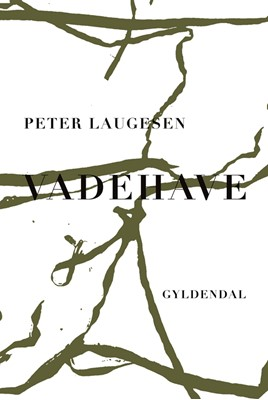 Vadehave Peter Laugesen 9788702289442