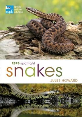 RSPB Spotlight Snakes Jules Howard 9781472971692