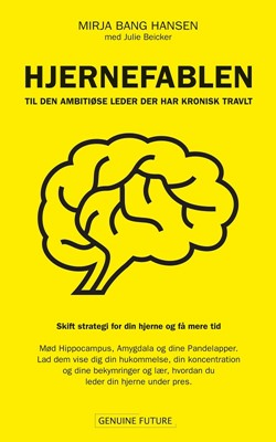Hjernefablen Mirja Bang Hansen 9788797206508