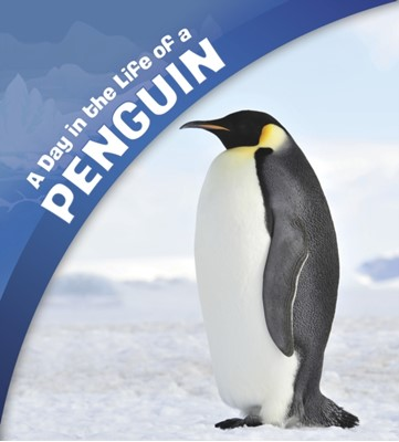A Day in the Life of a Penguin Sharon Katz Cooper 9781474758659