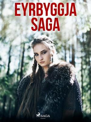 Eyrbyggja saga Óþekktur 9788726225600