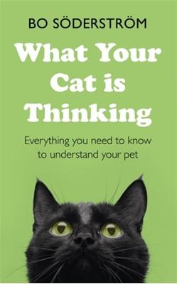 What Your Cat Is Thinking Bo Soderstrom, Bo Soederstroem 9781473689800