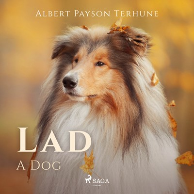 Lad: A Dog Albert Payson Terhune 9788726471854