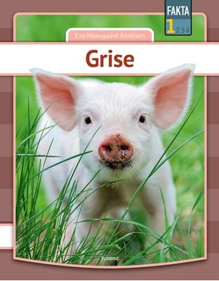 Grise Eva Mosegaard Amdisen 9788740664935