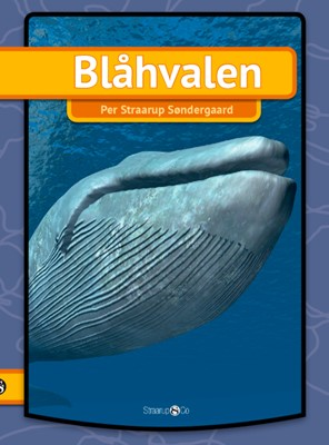 Blåhvalen Per Straarup  Søndergaard 9788770188708