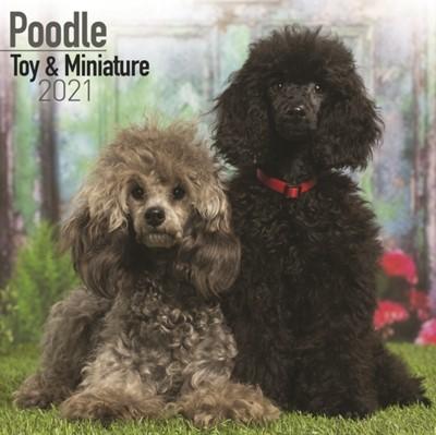 Poodle Toy & Miniature 2021  9781785809149