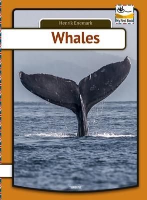 Whales Henrik Enemark 9788740661811