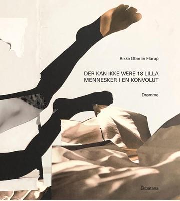 Der kan ikke være 18 lilla mennesker i en konvolut Rikke Oberlin Flarup 9788797199077