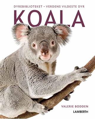 Koala Valerie Bodden 9788772246499