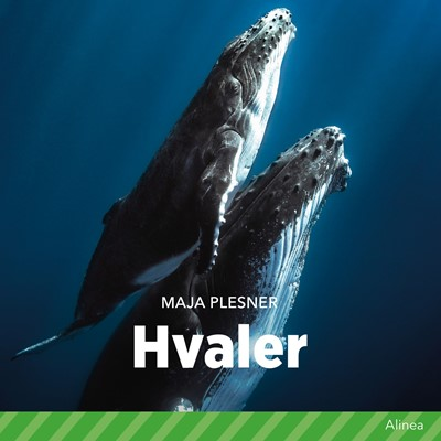 Hvaler Maja Plesner 9788726706567
