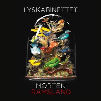 Lyskabinettet Morten Ramsland 9788763861052