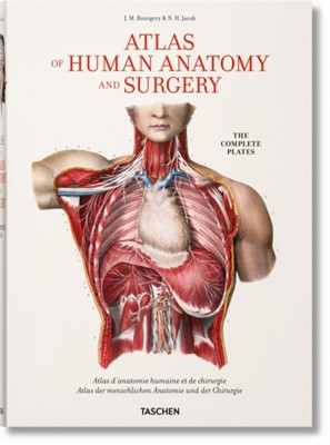 Bourgery. Atlas of Human Anatomy and Surgery Jean-Marie (Enseignant En Imagerie Medicale Lycee Jean-Rostand (Strasbourg) Section Imagerie Medicale) Le Minor, Henri Sick, Jean-Marie Le Minor 9783836568982