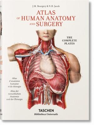 Bourgery. Atlas of Human Anatomy and Surgery Jean-Marie Le Minor, Henri Sick 9783836556620